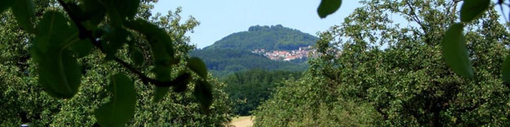 Schwäbischer Albverein | Ortsgruppe Holzheim